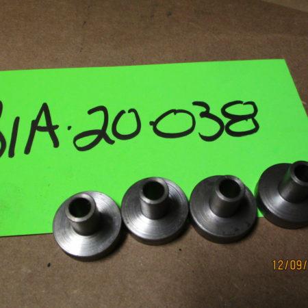 BIA-20-0038
