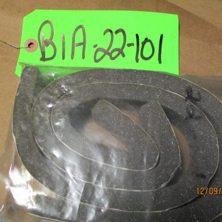 BIA-22-101